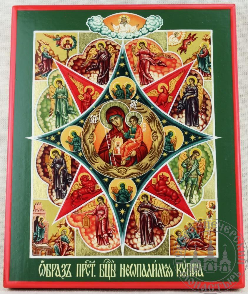 Неопалимая Купина образ Пресвятой Богородицы [ИМАП(фон)]